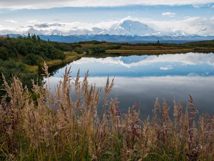 4 Tips to Help You Take Better Autumn Photos