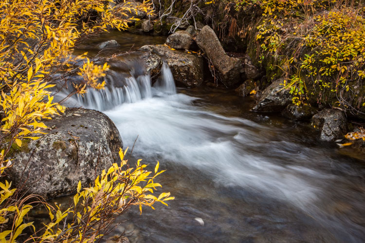 4 Tips to Help You Take Better Autumn Photos