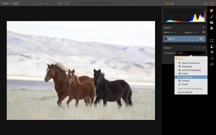 Luminar for Beginners - Landscape workspace