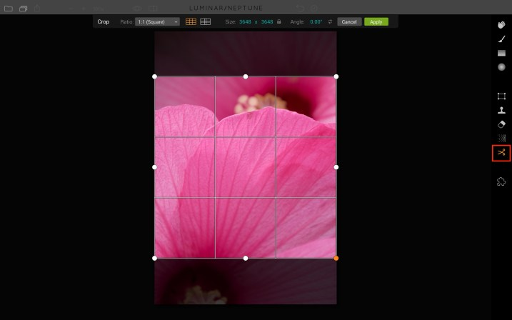 Luminar for beginners - crop tool