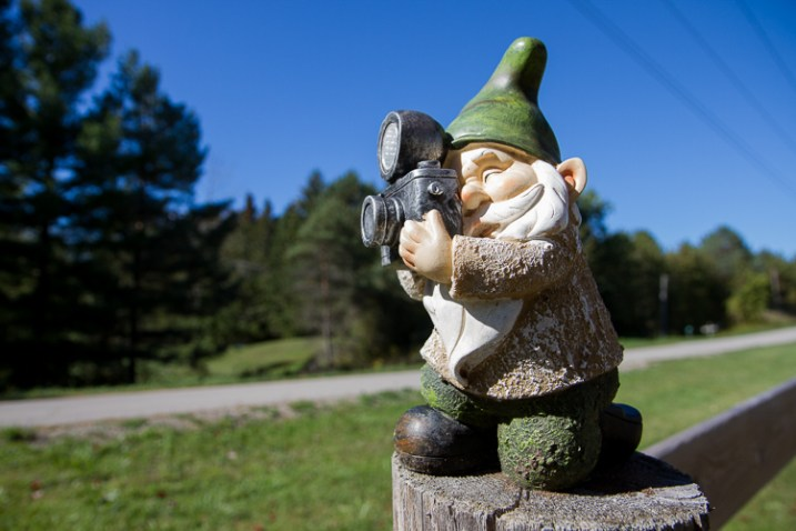 How to Show a Sense of Scale in Your Photography - gnome