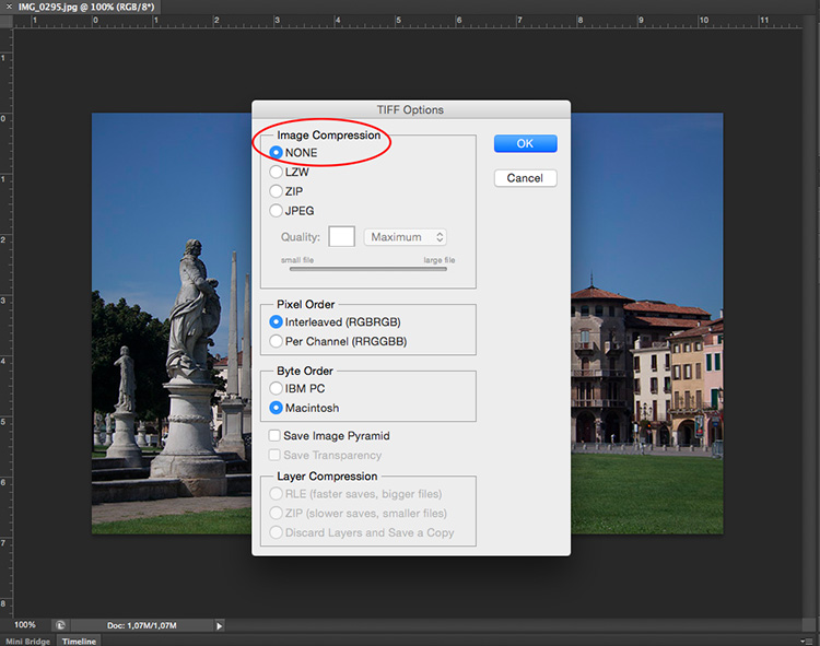 Tiff - How to Understand Pixels, Resolution, and Resize Your in Photoshop Correctly