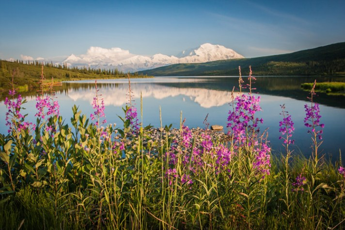 Ultimate guide outdoor nature photography 20
