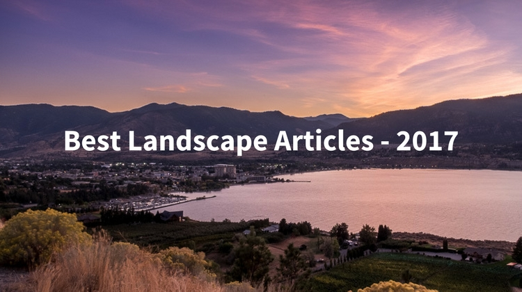 Best Landscape Articles on dPS in 2017