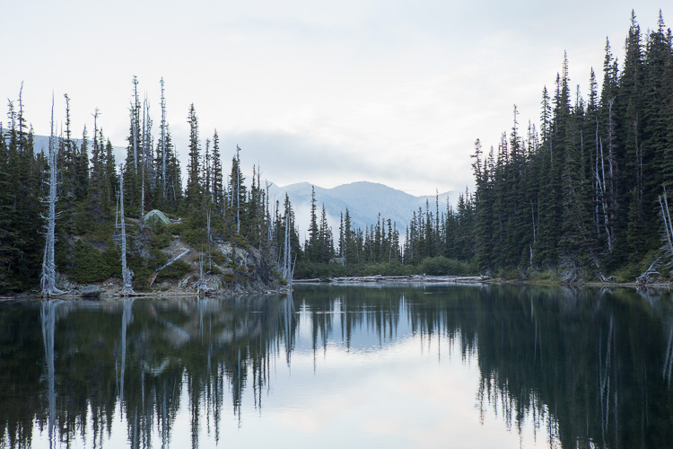 Mirror reflection of an alpine lake in Oregon - 5 Ways to Invest in Your Photography Over the Next 365 Days