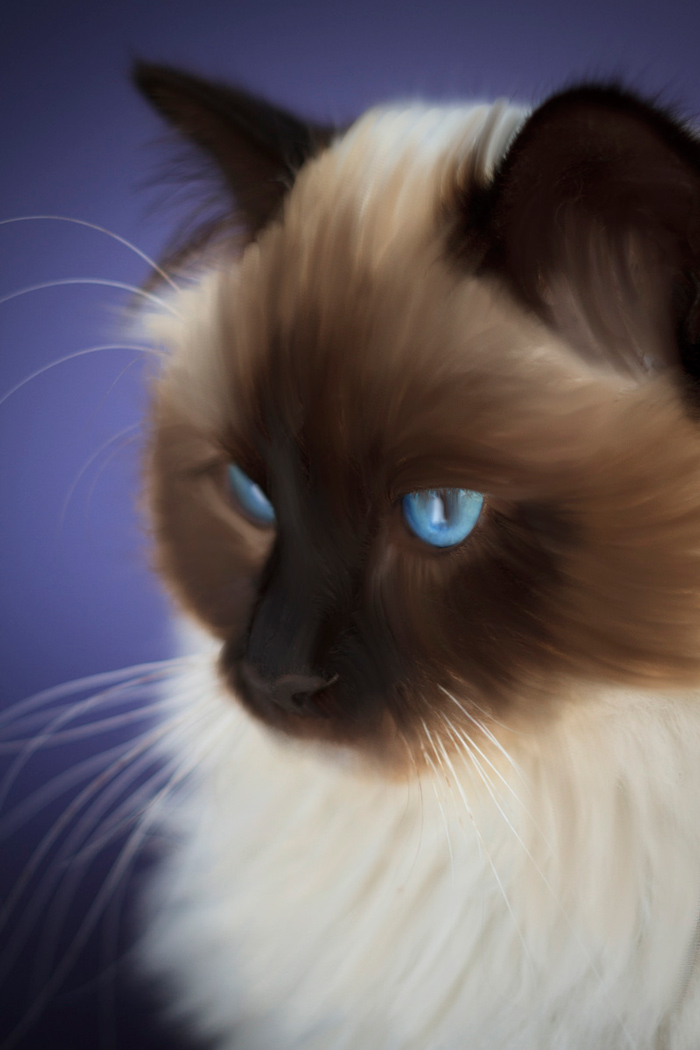 Tips for Doing Digital Painting with the Mixer Brush in Photoshop