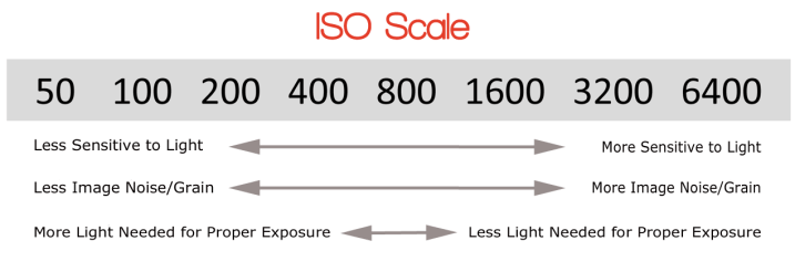 ISO scale - Super Simple Introduction to Manual Mode and How it Will Transform Your Photos