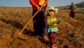 Parents and young daughter working in a field in Myanmar