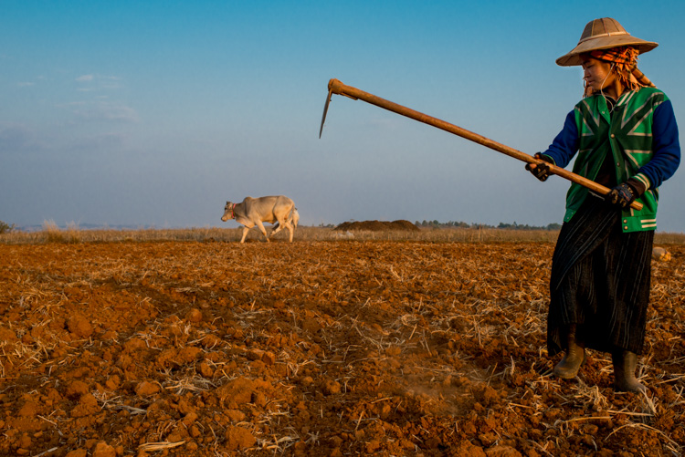 Worker in a field in Myanmar - 3 Bad Habits to Break to Improve Your Photography