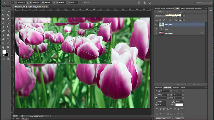 Place - How to Use Layers and Masks in Photoshop to Add Text to Your Photos