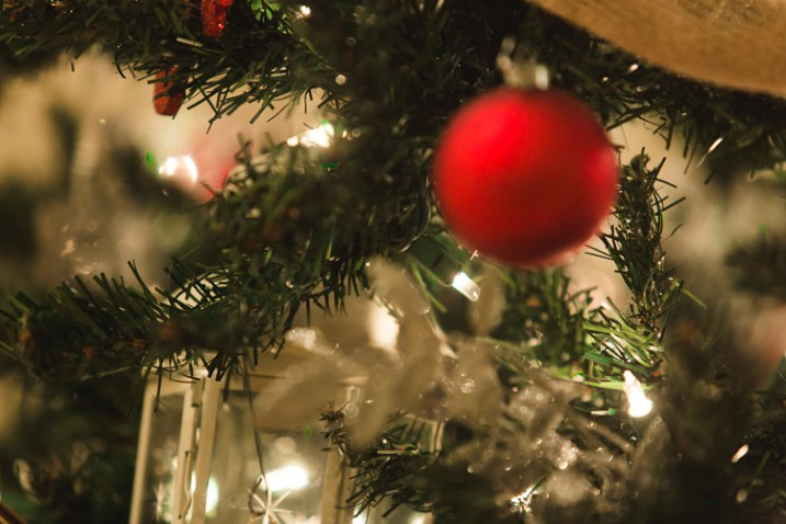 An image of a Christmas Tree ornament where the autofocus grabbed onto the wrong spot in the image - Focus Challenges and How Live View Can Help You Get Razor-Sharp Images