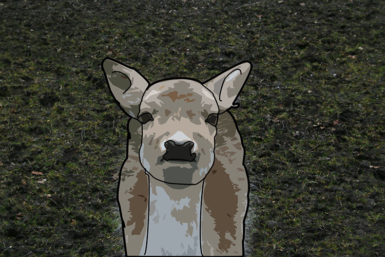 Deer cartoon - How to Turn Your Photo into a Cartoon Drawing Using Photoshop