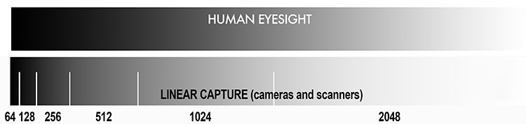 LinearCapture Eye Camera - How to Understand the Science of Photography and Technical Terms for Mastering Image Tonality