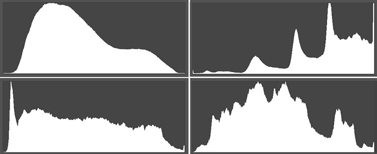Histogram Shapes