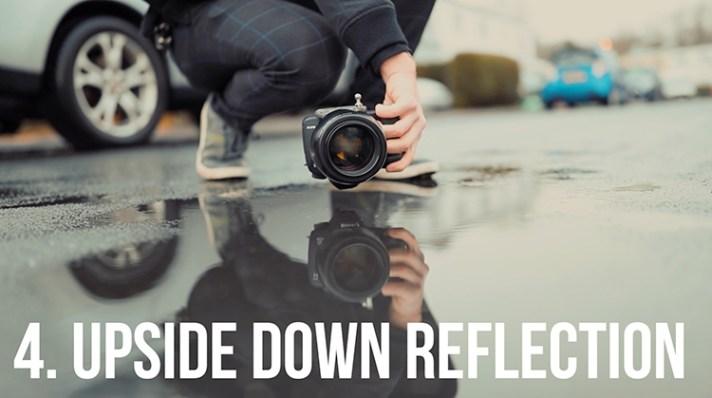 Reflection shot - 10 Amazing Camera Hacks for Dog Photography