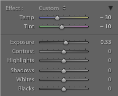 Settings on the graduated filter of a hockey image