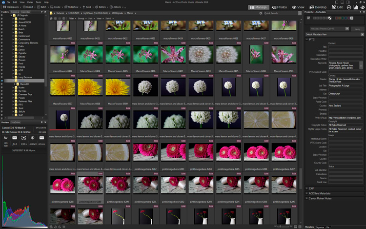 How to Edit Using Layers with ACDSee Ultimate Photo Studio 2018 - image thumbnails