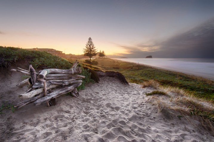 Driftwood bench seat on sand dunes overlooking Mount Maunganui Beach at sunset. - photography portfolio