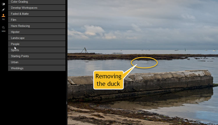 Image: Using those tools to remove a duck from this image.