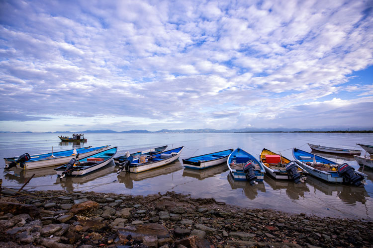 Tips for Using Color in Your Photography - boats in a row on the shore