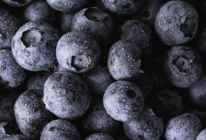 blueberries - 9 Ways to Create Balance in Your Photography