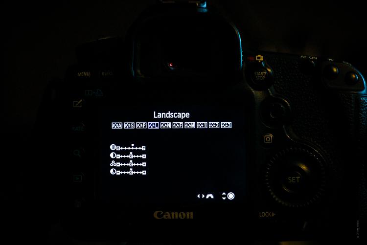 Understanding Creative Profiles in Lightroom Classic CC - camera profiles landscape