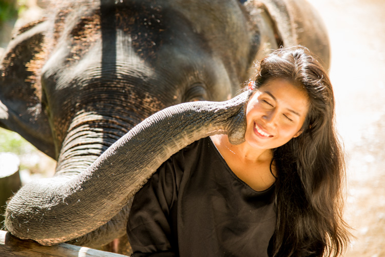 Reflected light enhances a photo of a Thai woman being kissed by an elephant. 7 Tips for How to Fix Bad Lighting