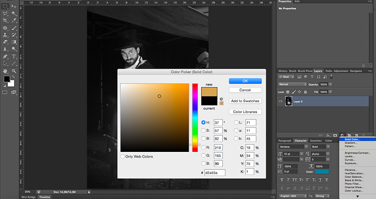 Solid Color Tonal Effects Photoshop Tutorial