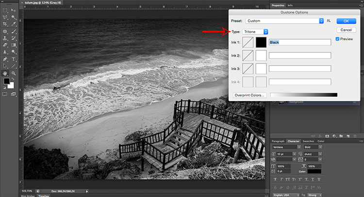 Triotone Tonal Effects Photoshop Tutorial