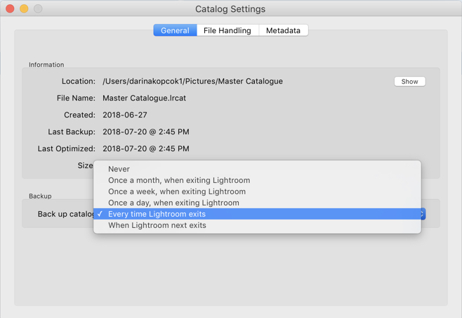 Back Up Preferences - How to Merge Multiple Lightroom Catalogs Into One