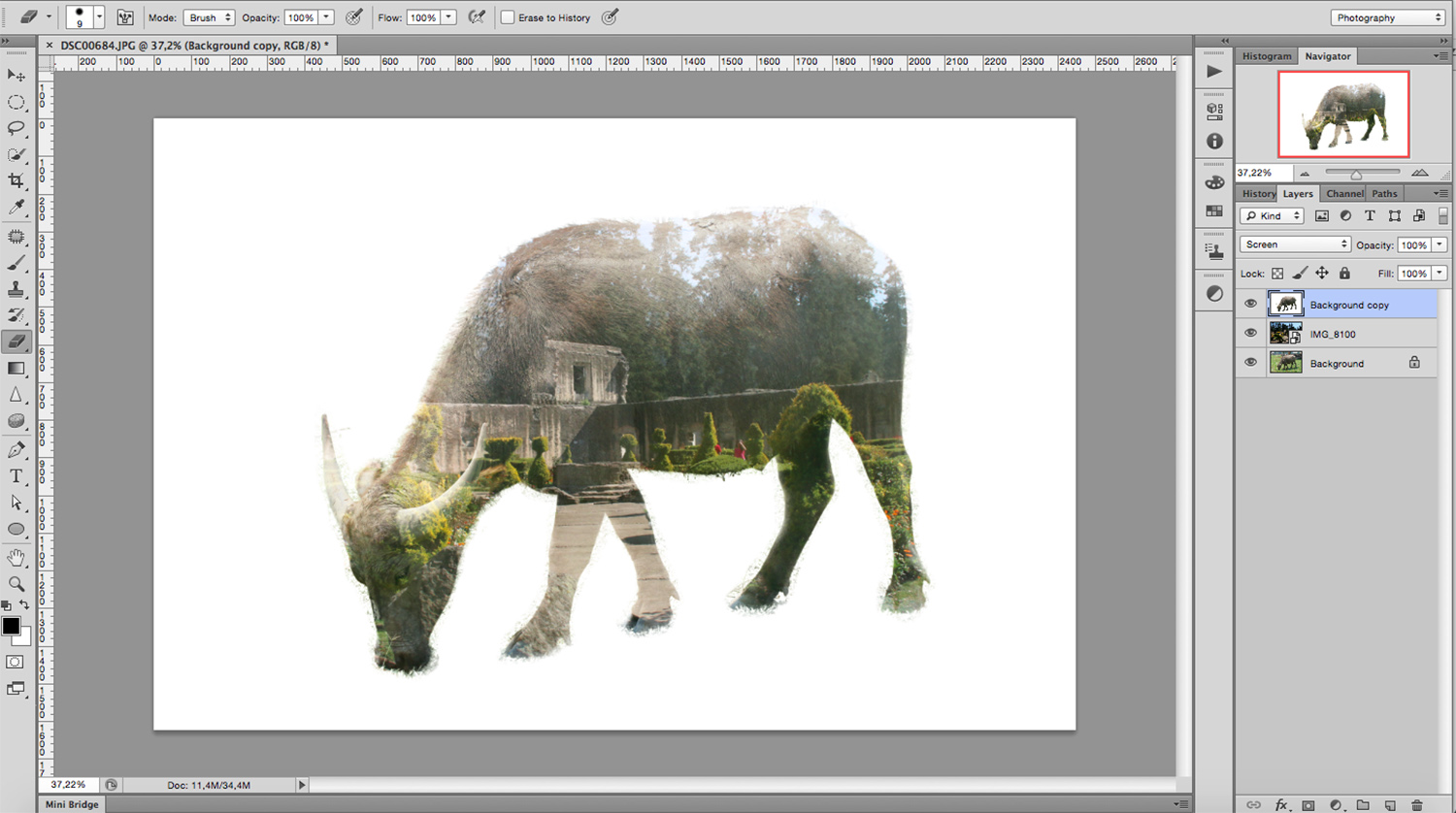 result #2 - How to Create a Multiple Exposure Effect in Photoshop