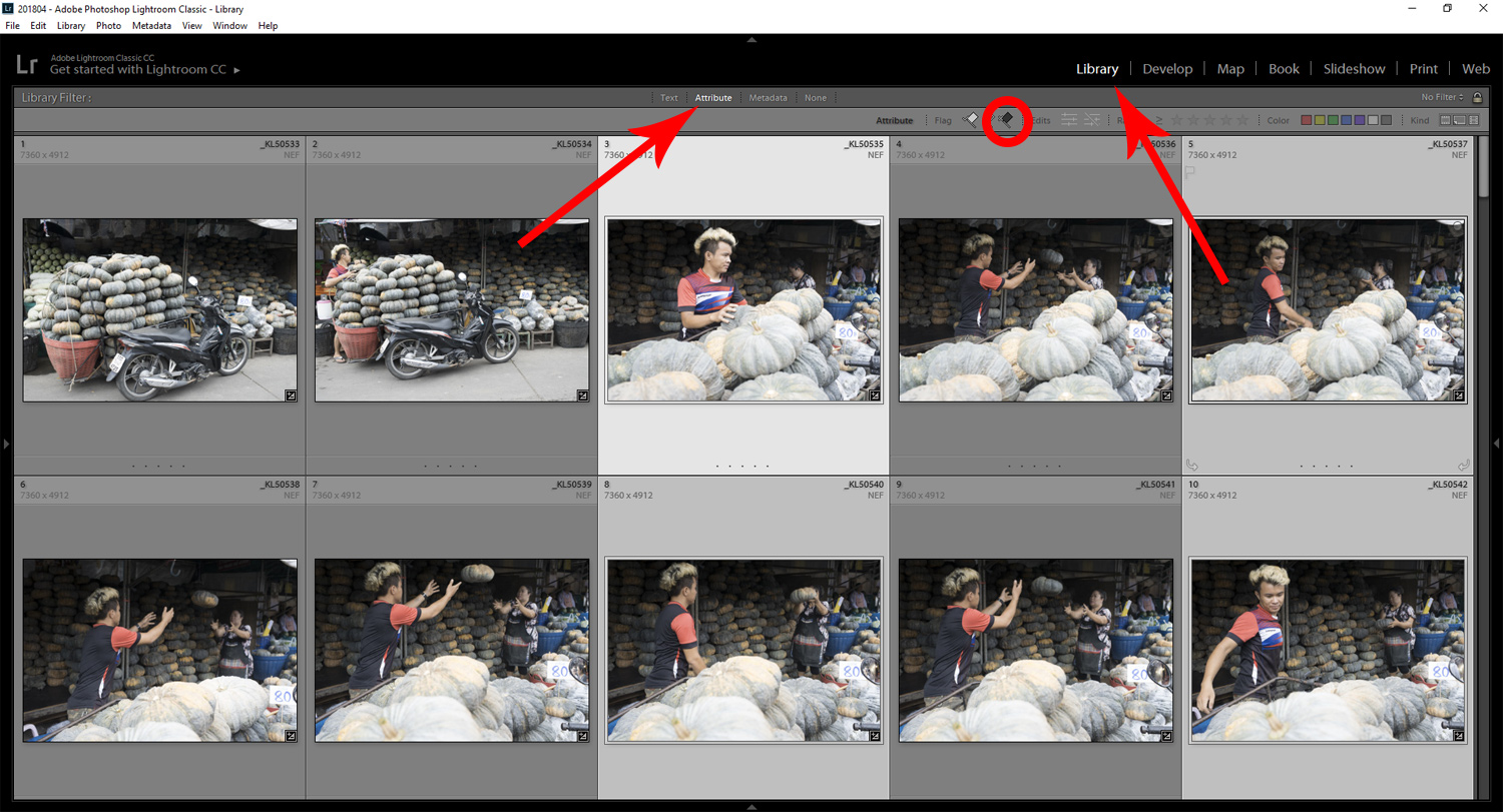 Screen Grab for Black Flag - Tips for Culling Your Photos