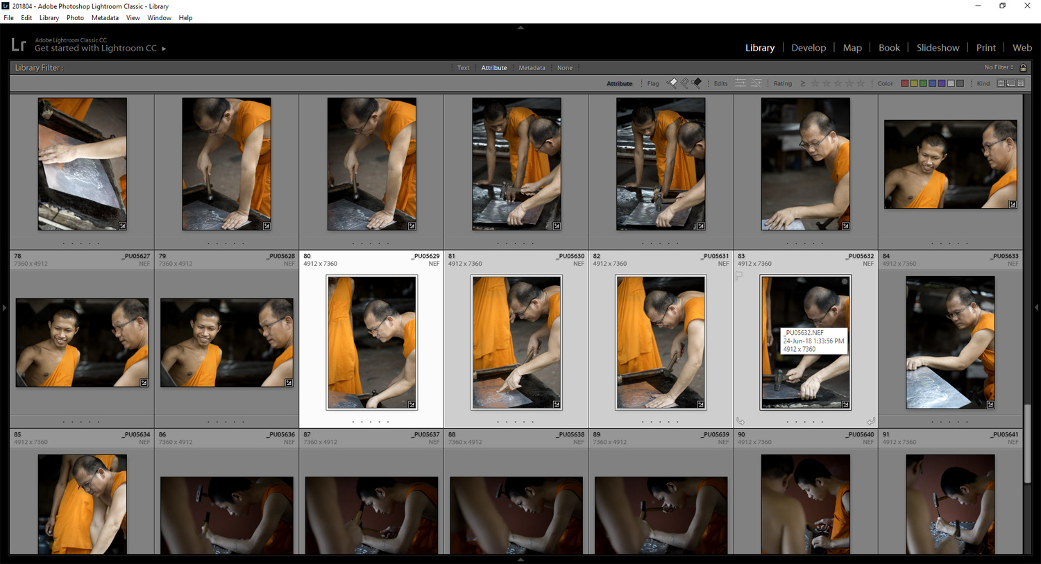 lightroom thumbnails - Tips for Culling Your Photos