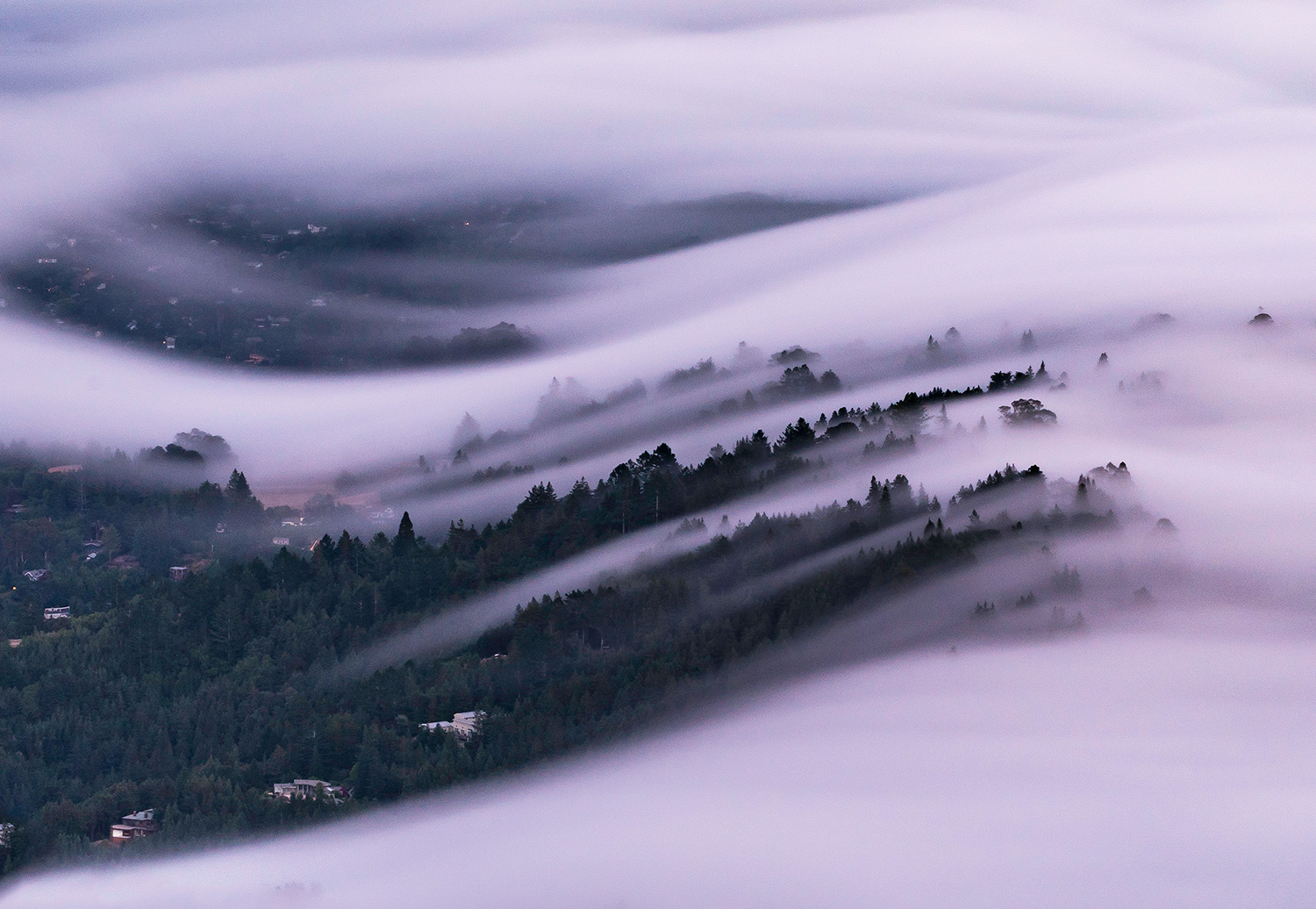 4 Tips for Photographing Fog