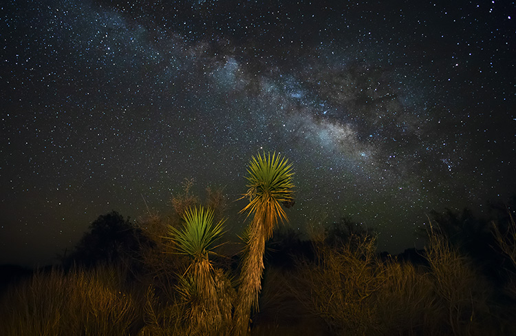 Milky Way - Night Sky Photography