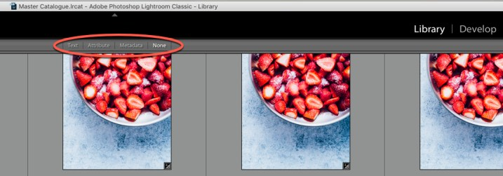 Lightroom Library Filter Bar - How to Find for Your Photos in the Lightroom Catalog Using Filters