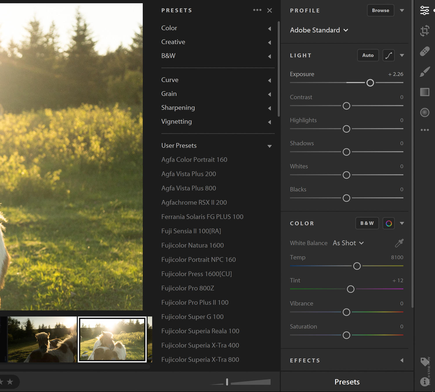 How to Sync Your Develop Presets to Lightroom Mobile