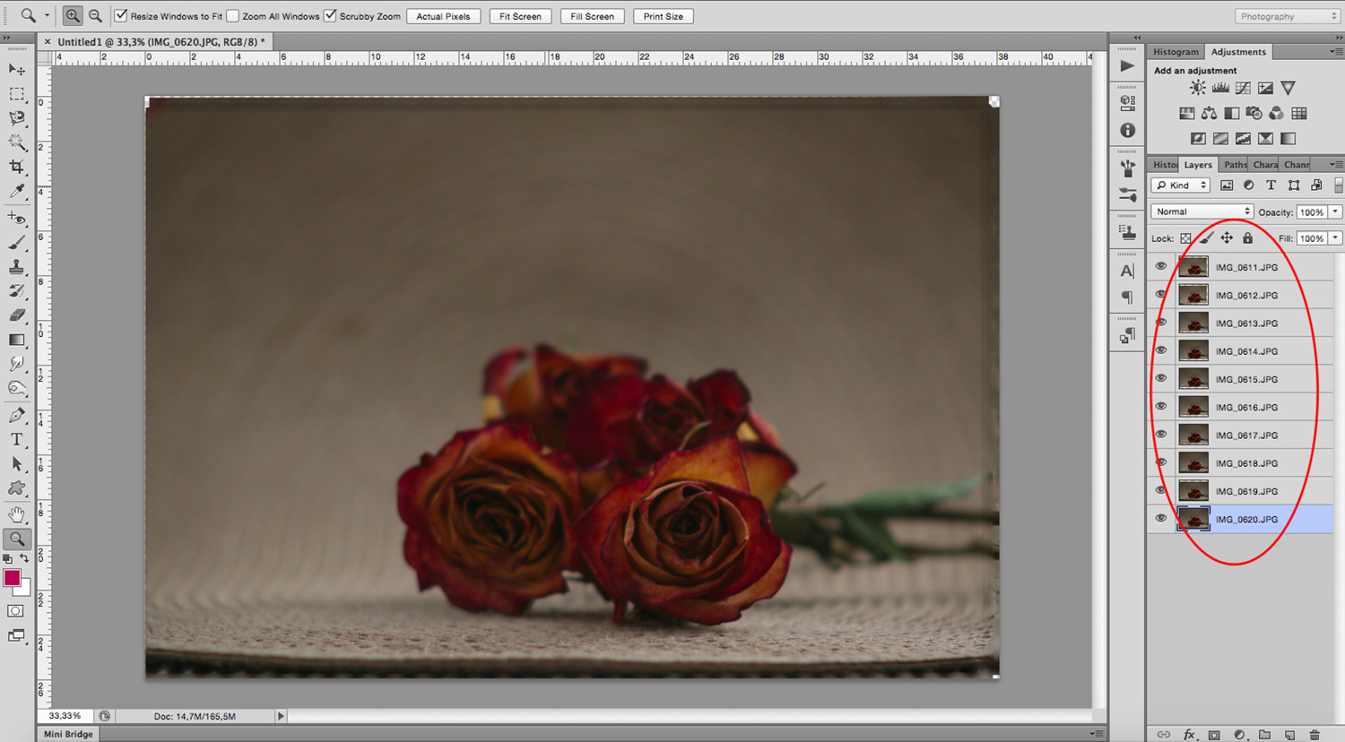 Focus Stacking for an Infinite Depth of Field - layers