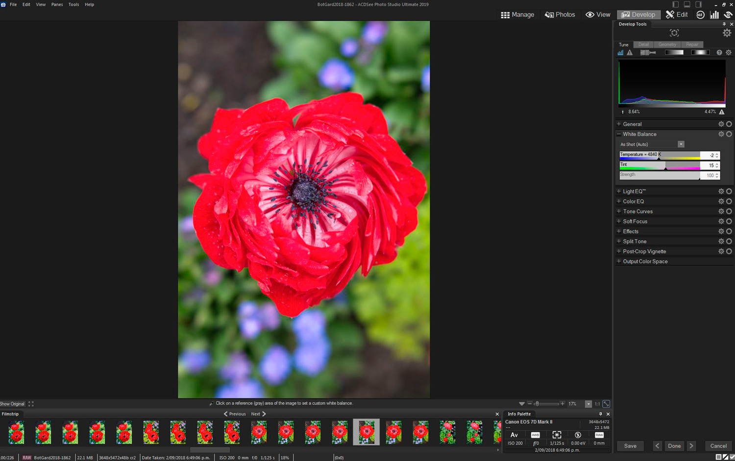 13 - ACDSee Photo Studio Ultimate 2019 Review