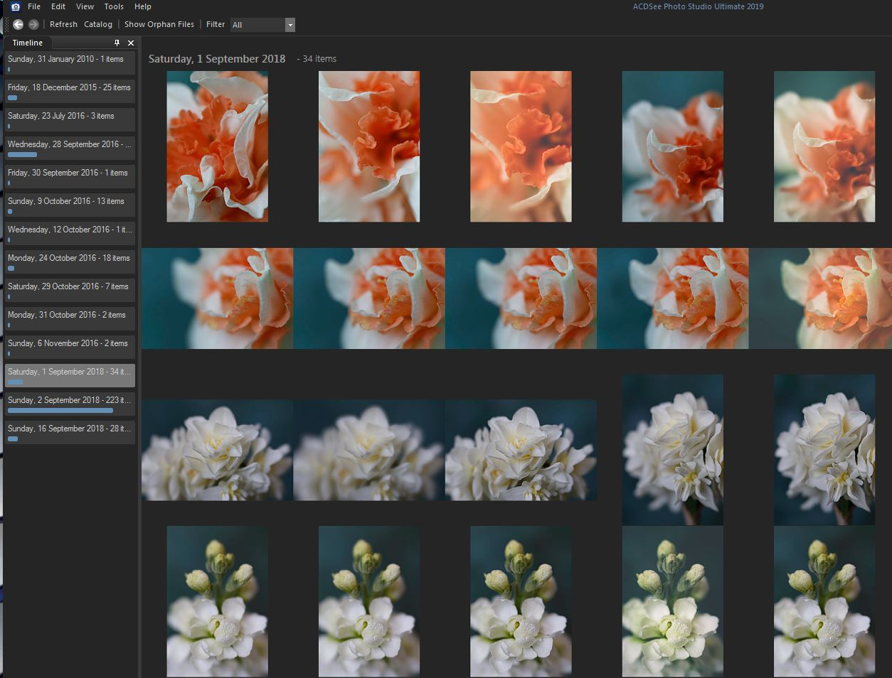 10 - ACDSee Photo Studio Ultimate 2019 Review