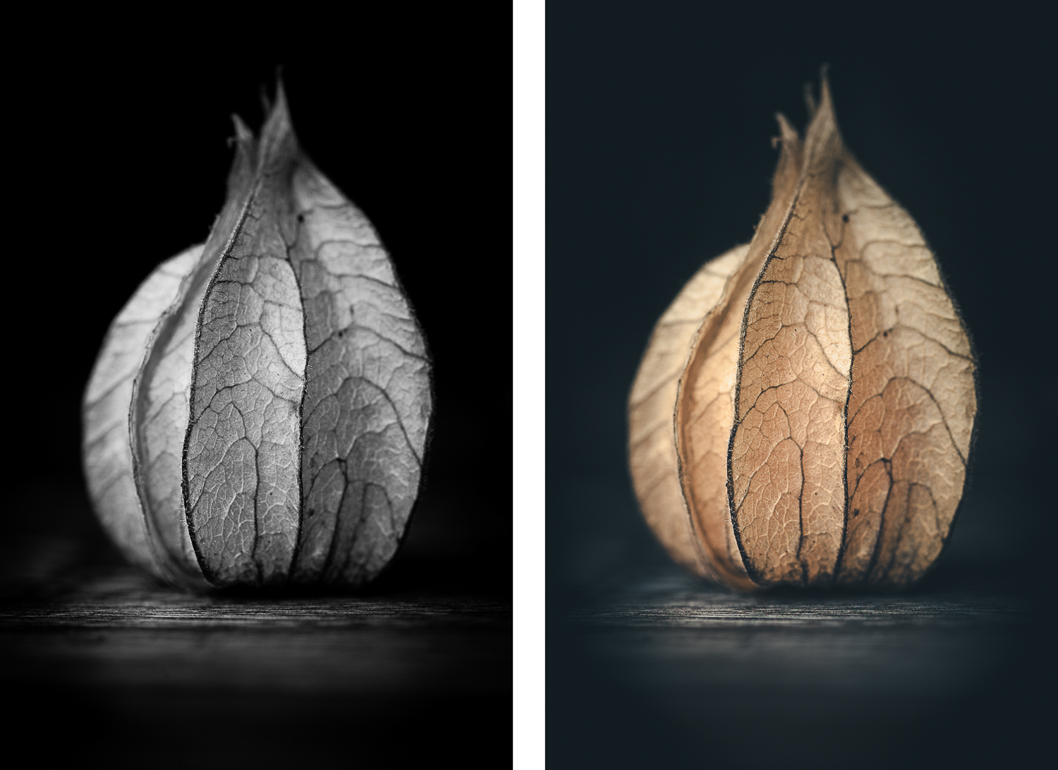 https://i0.wp.com/digital-photography-school.com/wp-content/uploads/2018/09/physalis_bw_colour.jpg?resize=1500%2C1091&ssl=1