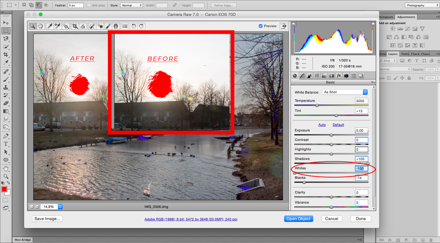 Balance Exposure in Adobe Camera Raw to Improve Your Photographs - Whites