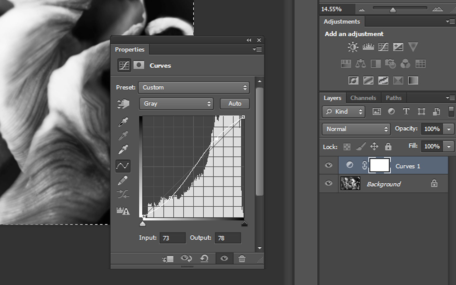 5 - How to Duotone a Photograph in Photoshop