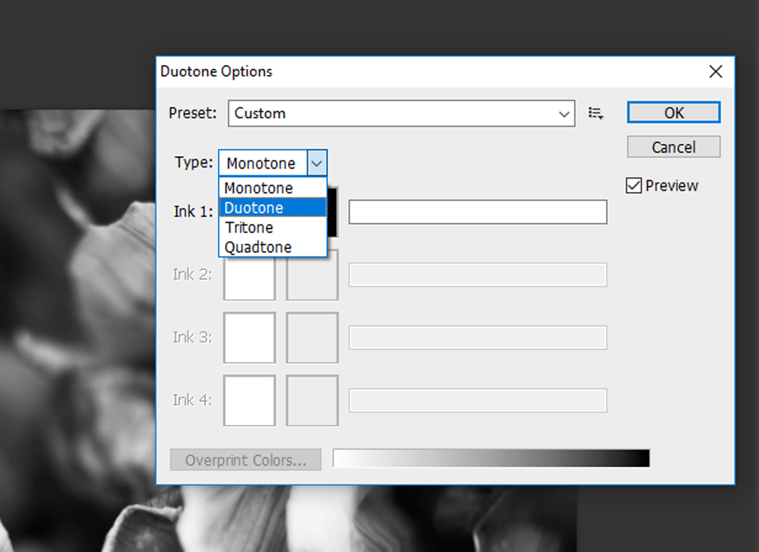 8 - How to Duotone a Photograph in Photoshop
