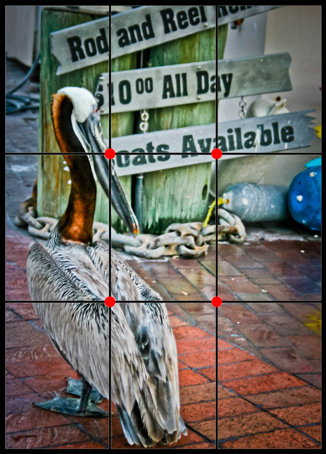 2 - Breaking Rule of Thirds in Photography