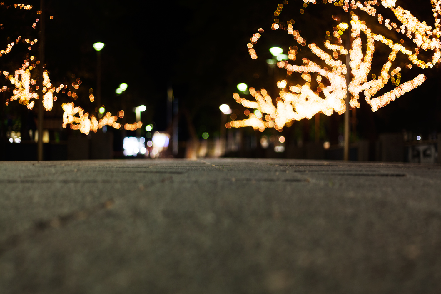 Image: The f/1.8 aperture of the Canon EF 50mm f/1.8 II allowed me to take this shot with a lot less...
