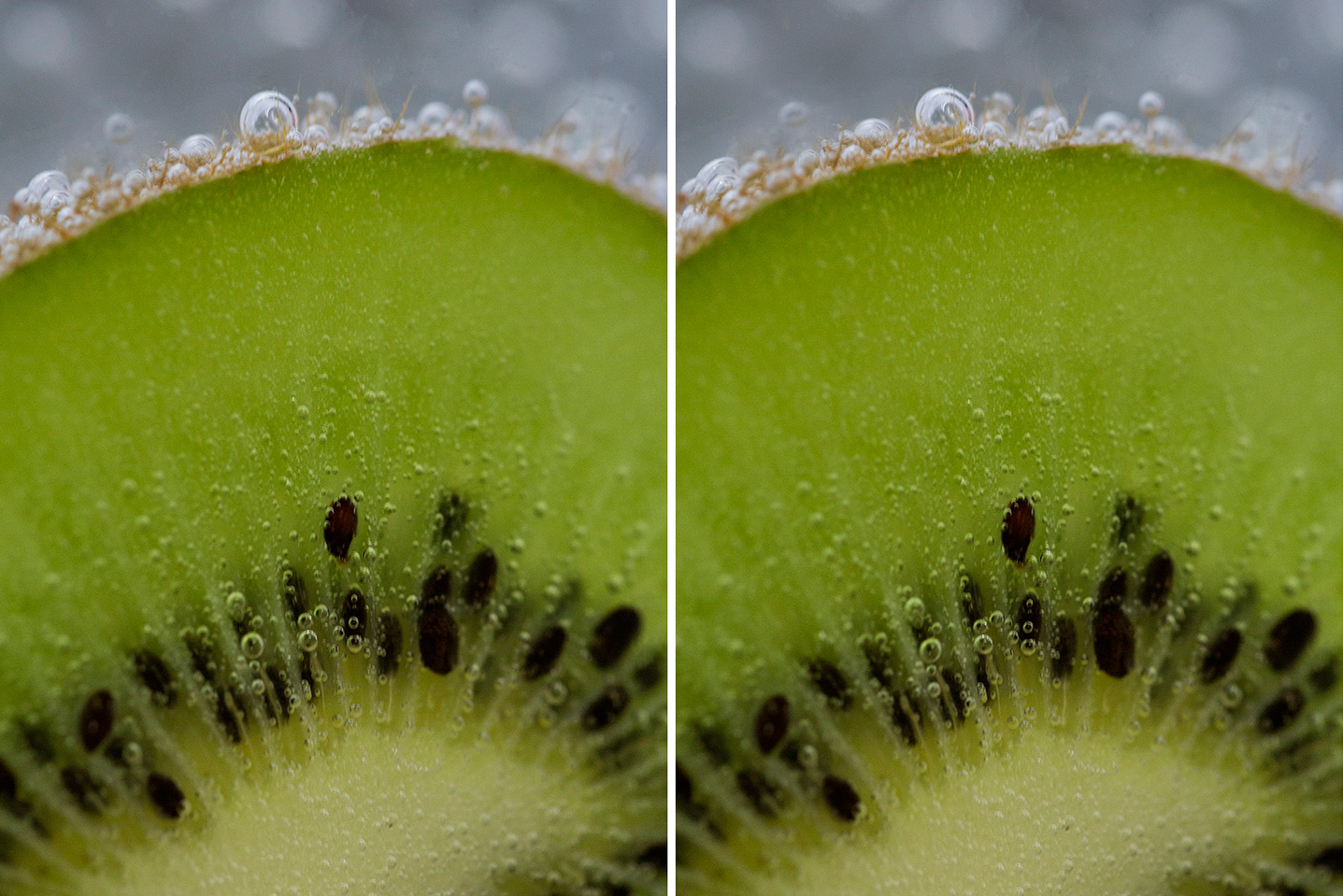 Image: The Liquify Tool used to reshape a piece of fruit.