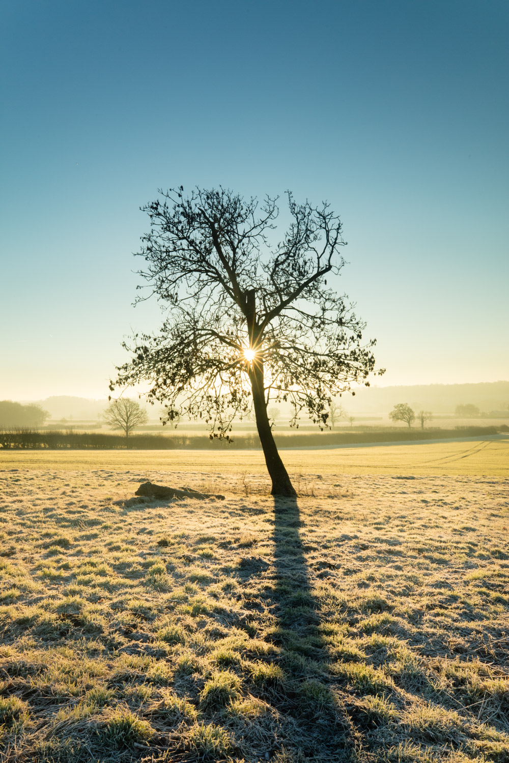 5 tips for capturing nature across different seasons