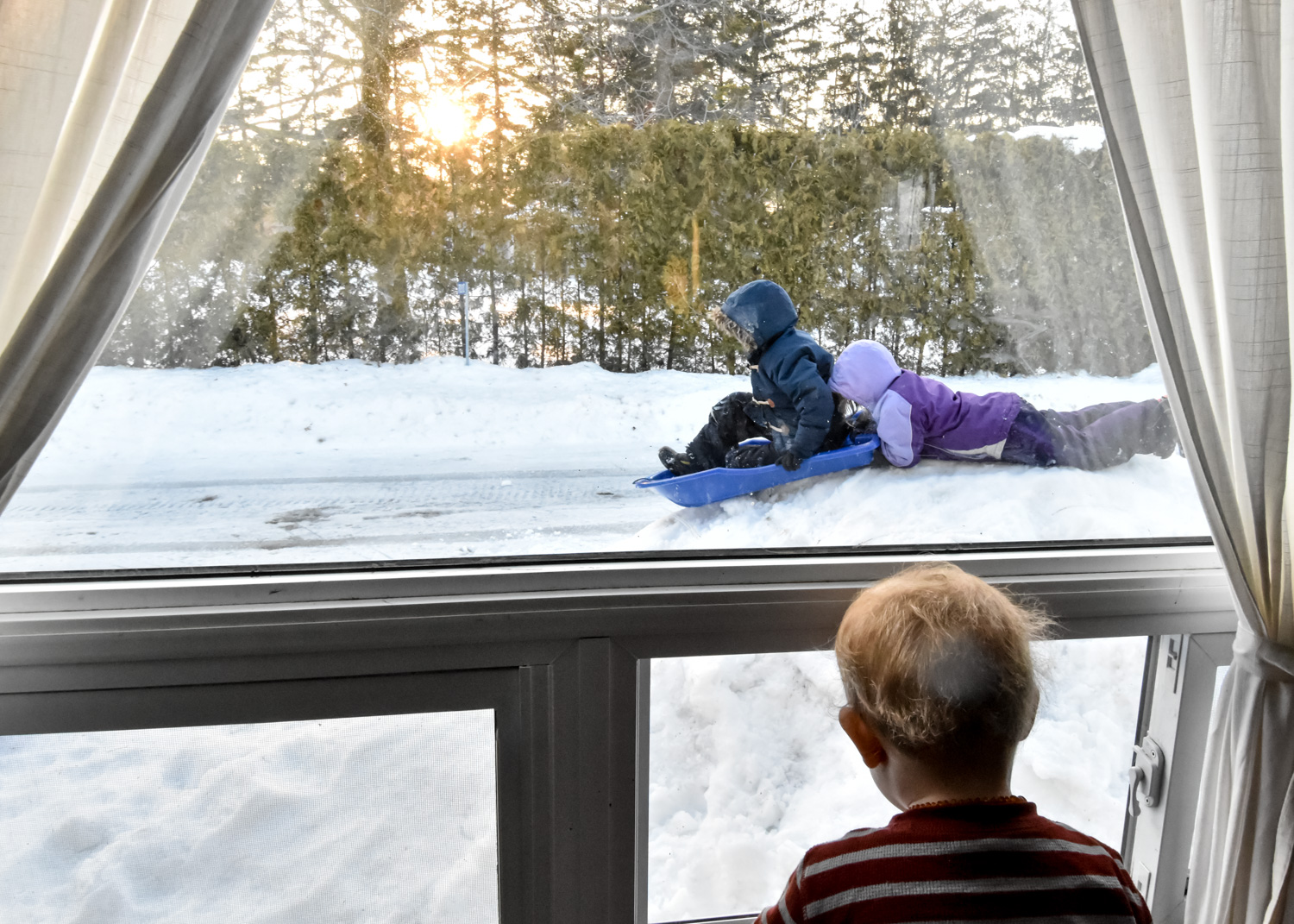 Golden hour photography of kids sledding in the snow