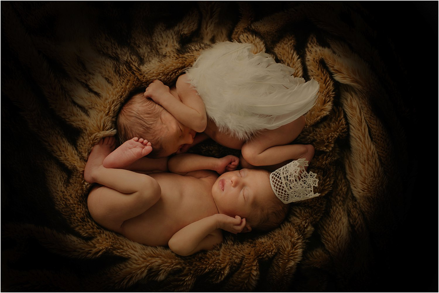 Newborn photography basics and the equipment to use